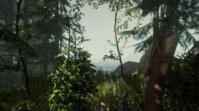 TheForest森林实用作弊码分享