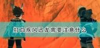 《怪物猎人物语2:毁灭之翼》打白疾风迅龙注意事项分享