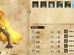 怪物猎人物语2绚辉龙怎么打 绚辉龙打法详解