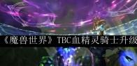《魔兽世界》TBC血精灵骑士升级