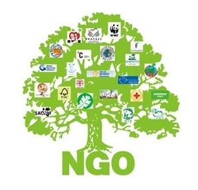 网络用语ngo组织是什么意思 ngo组织出自哪里