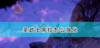 《开拓者:正义之怒》圣武士席拉强化思路推荐