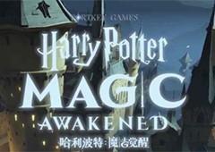 哈利波特魔法觉醒无期徒刑怎么做 成就达成攻略