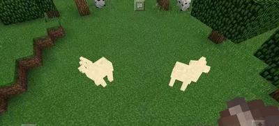 我的世界羊驼吃什么 我的世界羊驼驯服食物介绍
