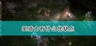 《暗黑破坏神2:重制版》圣骑士优缺点介绍