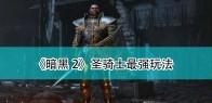 《暗黑破坏神2:重制版》圣骑士最强玩法